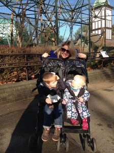 The Double Buggy!