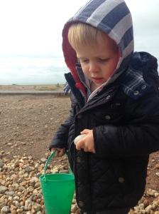 The Bear collecting pebbles at Littlehampton